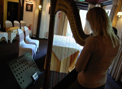Tuniing the harp