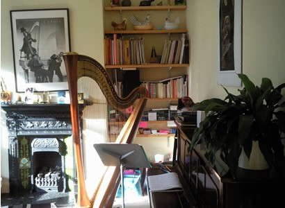 Harp in lounge at home