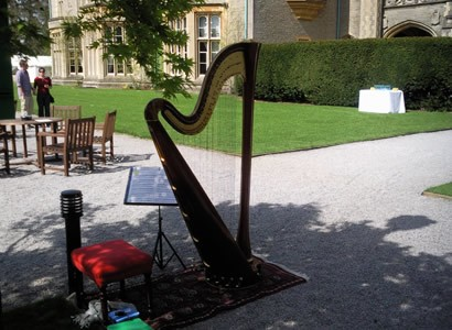 Harp set up outdoors