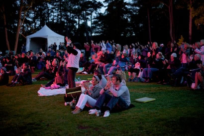 Audience as night falls