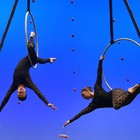 Top Circus Entertainment You 'Must Have' At Your Next Corporate Event