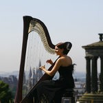 Beautiful Harp, Classical Musician for hire in Cardigan