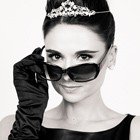 Audrey Hepburn Lookalike, Mix and Mingle for hire in Cardigan