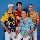 (Beach Boys) Beach Boys Gold, Wedding Tribute Band available to hire for weddings in Kent