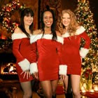 Hire Christmas Tree-O, Carol Singers from Alive Network Entertainment Agency
