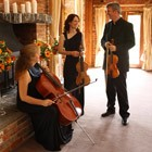 Hire City String Trio, Classical Musicians from Alive Network Entertainment Agency