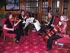 Clifton String Quartet, Classical Musician for hire in Cardigan