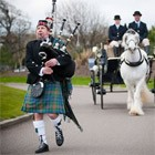 Hire DM Piper, Bagpipers from Alive Network Entertainment Agency