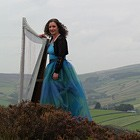FW Harp (Harpist), Classical Musician for hire in East Yorkshire