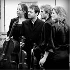 Gold Strings, String Quartet for hire in Berkshire