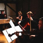 Hire Gold Strings, String Quartets from Alive Network Entertainment Agency