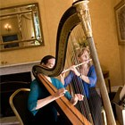 Harmony Duo, Harpist for hire in Brecon