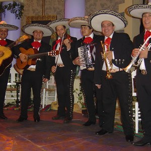 mucho mariachi mariachi band london alive network