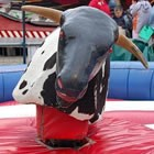 Rodeo Rides, Event Supplier for hire in East Sussex