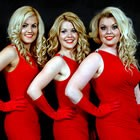 The Dreams, Solo, Duo or Trio for hire in Buckinghamshire