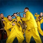 The Jive Aces are available in Cornwall