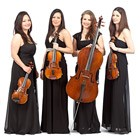 Hire Calithea String Quartet, String Quartets from Alive Network Entertainment Agency