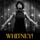 (Whitney Houston) Whitney, Tribute Band for hire in Dumfriesshire area
