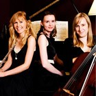 Yorkshire Trio, Classical Musician for hire in Cardigan