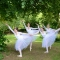 Click for a bigger image of Bespoke Ballet Company
