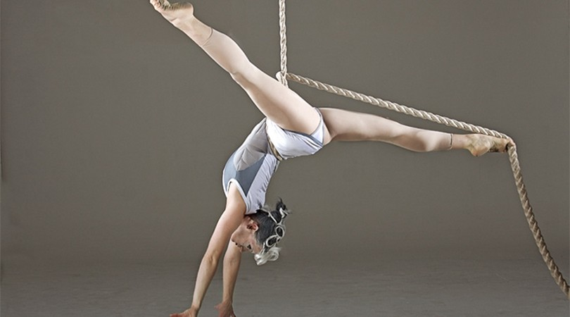 The Aerial Dance Artist